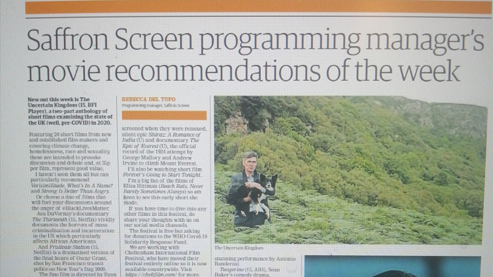 A local newspaper article about Saffron Screen's film recommendations of the week.